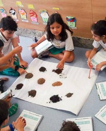 Atividade de Observação do Solo – Ensino Fundamental (3º ano)